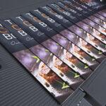 bizhub Press C1100/C1085 Image Quality